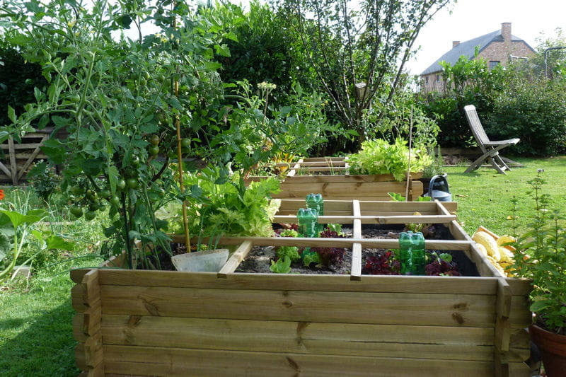 1000 images about potager en carr ou rectangle on pinterest raised beds vegetable garden for Potagers sureleves
