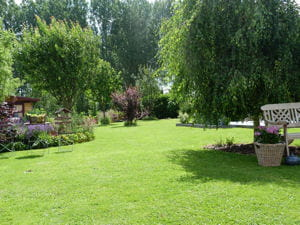 jardin1