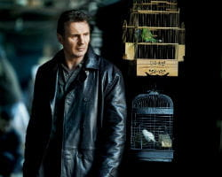 liam neeson int