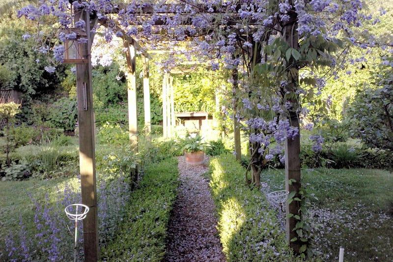 Une all e sous la glycine belles all es de jardin journal des femmes - Pergola voor glycine ...