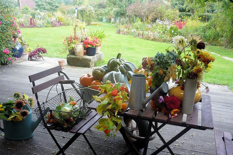Au Jardin De La Famille De Fabreville Of La Famille Des Courges Au Complet Des Jardins D 39 Automne