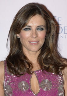 liz hurley 220