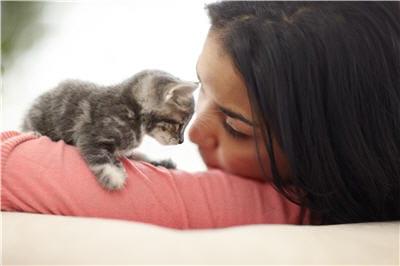 Allergie aux chats comment s 39 y adapter journal des femmes - Chat qui dort sur son maitre ...