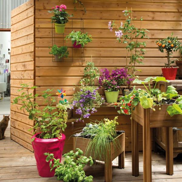 Carr potager b y o chez botanic for Carre potager sur balcon