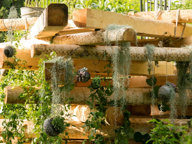 le jardin suspendu le jardin d 39 essai 2013 de l 39 otj journal des femmes. Black Bedroom Furniture Sets. Home Design Ideas