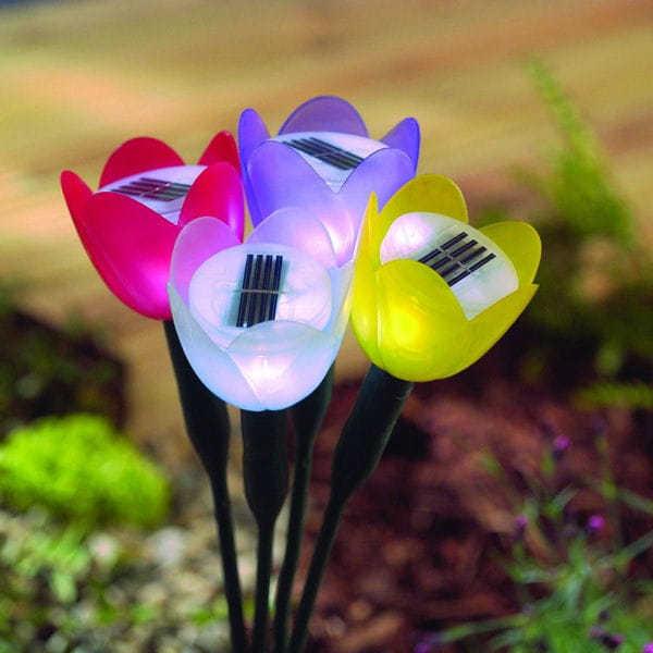 Lampes solaire tulipe de jardiland plein feu sur les for Lampe solaire pour portail