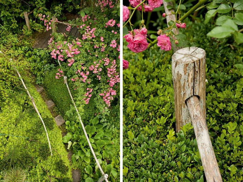 Un chemin entre buis et rosier un jardin en pente plein for Decoration jardin rosier
