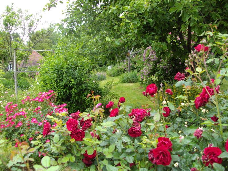 Que du bonheur vos plus beaux jardins en t journal for Les plus beaux jardins anglais