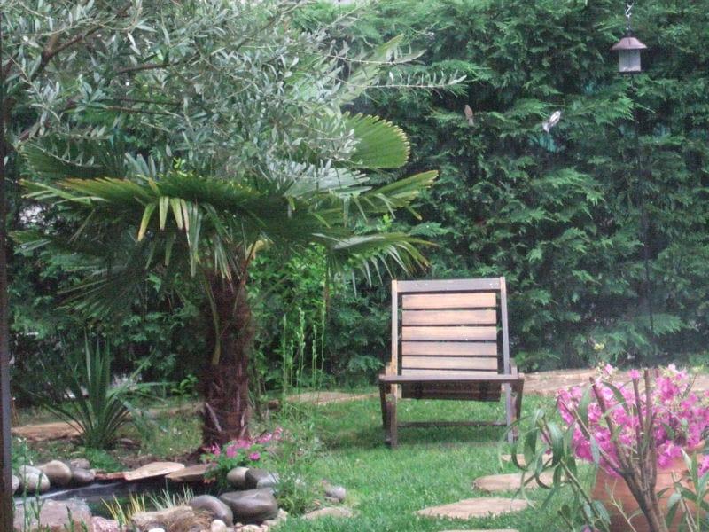 Le jardin du jade vos plus beaux jardins japonais journal des femmes - Bassin jardin japonais grenoble ...