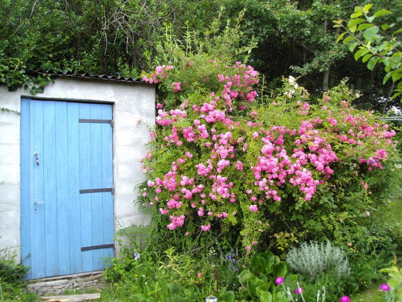 Cabane porte bleue for Porte cabane jardin