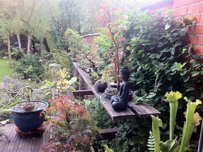 Petits bonsa s et statue de bouddha visitez le jardin de - Jardin de bonsais ...