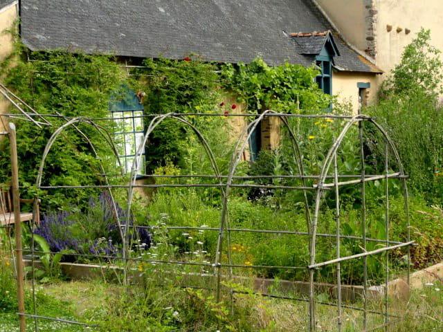 Cr ation d 39 un jardin m di val for Jardin medieval