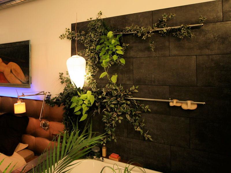 salle de bains exotique belles plantes cherchent. Black Bedroom Furniture Sets. Home Design Ideas