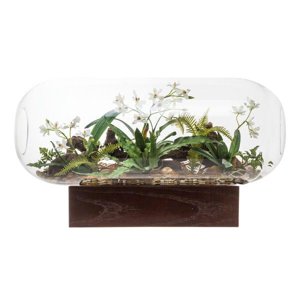 Plante d 39 int rieur je cr e un mini jardin chez moi for Ou acheter plante interieur