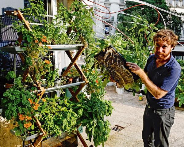 Un potager sur son balcon c 39 est possible - Faire un jardin sur son balcon ...