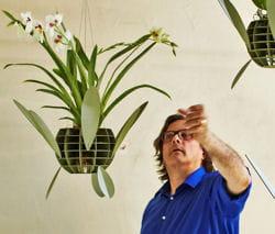 l 39 orchid e vue par le designer roderick vos journal des femmes. Black Bedroom Furniture Sets. Home Design Ideas
