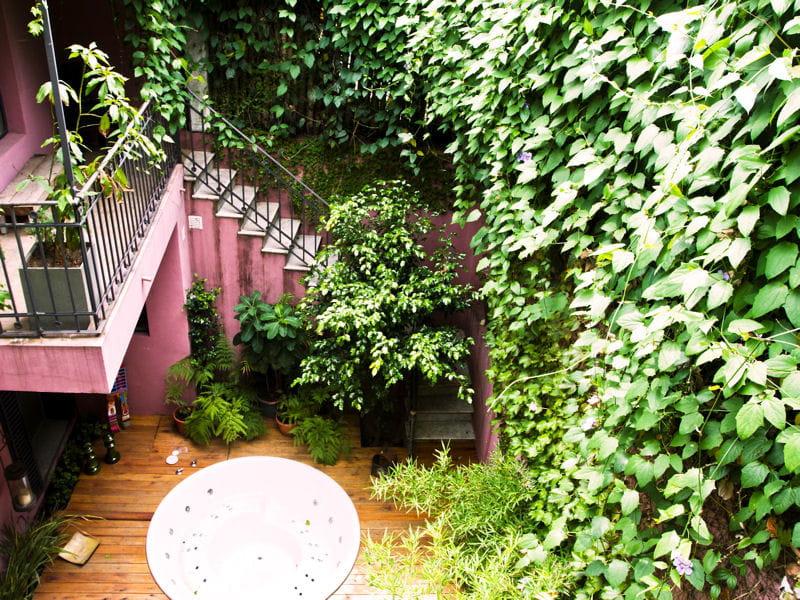 Terrasse Vigne Vierge : Une terrasse v u00e9g u00e9tale La vigne vierge u00e0 l u0026#39;assaut de nos