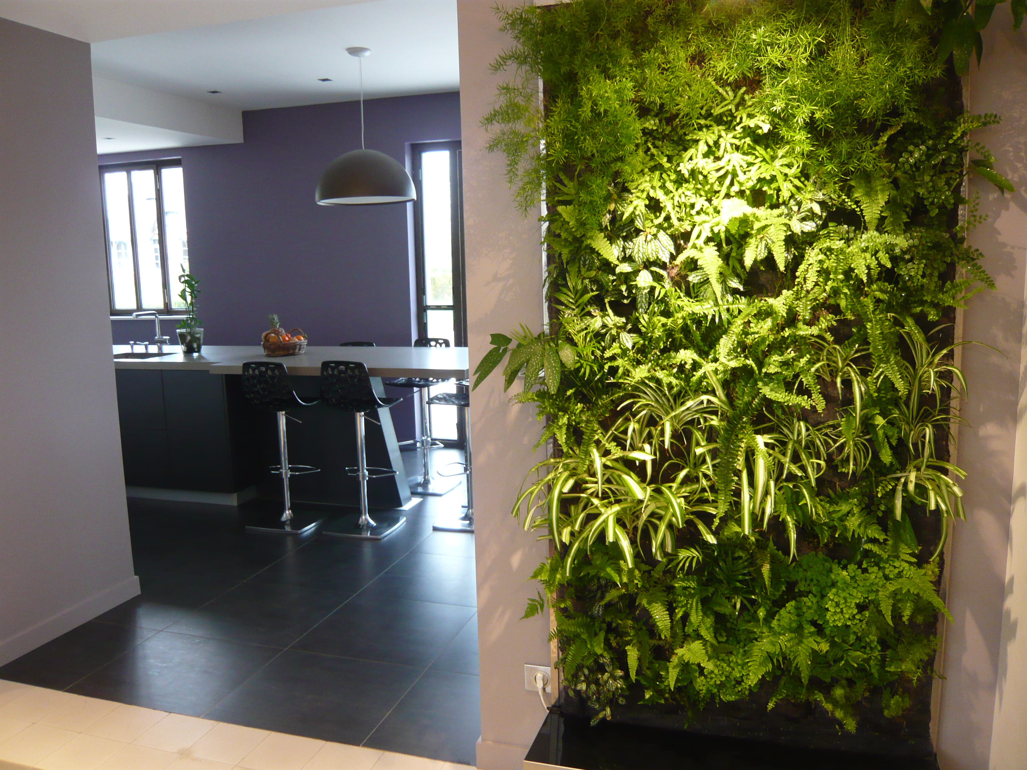 mur végétal en intérieur et en extérieur Peut-on installer un mur ...