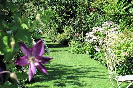 Le paradis fleuri - Allées de lecteurs - Journal des Femmes Jardin