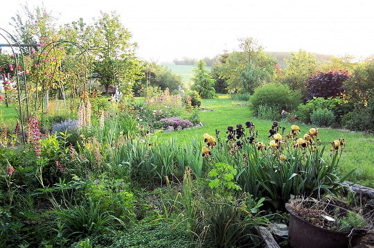 Mon jardin fleuri jardins de lecteurs journal des femmes for Jardin fleuri