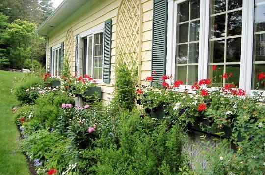 mon jardin l 39 anglaise jardins de lecteurs journal des femmes. Black Bedroom Furniture Sets. Home Design Ideas