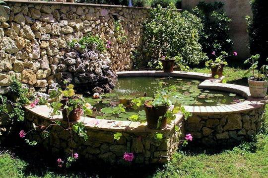 Contre le muret de pierres les plus beaux bassins for Jardin hors sol