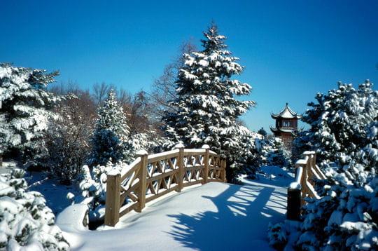 Un paysage blanc les jardins du monde r unis en un seul for Jardin botanique hiver 2015