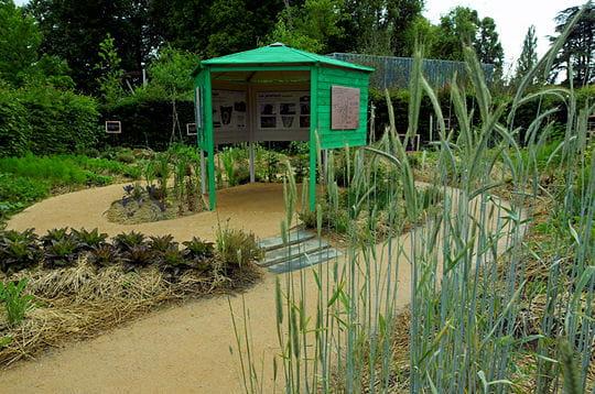 Cocagne de jardin festival des jardins de chaumont for Oasis jardin de cocagne