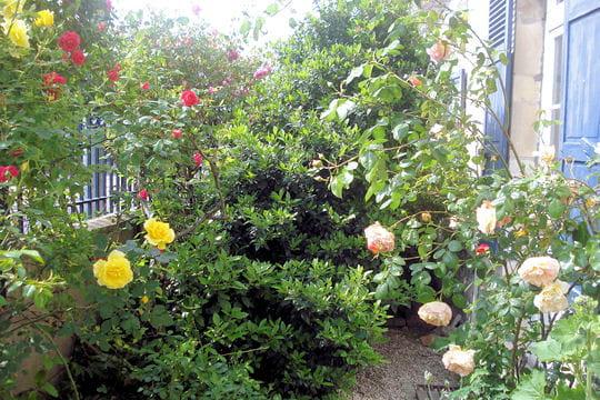 Das schatzk stlein des leonidischen hausfreunds for Conseil deco jardin