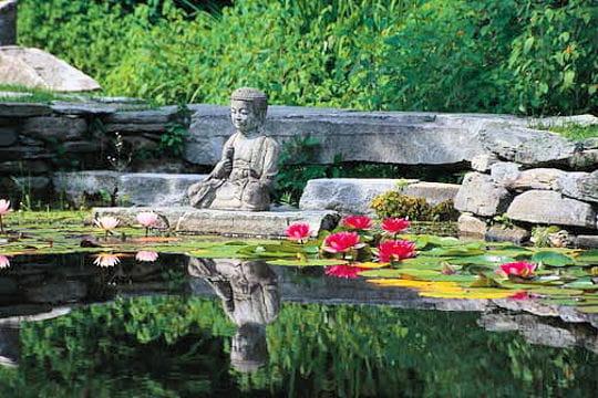 Images de Bienêtre - Page 2 Bouddha-364623