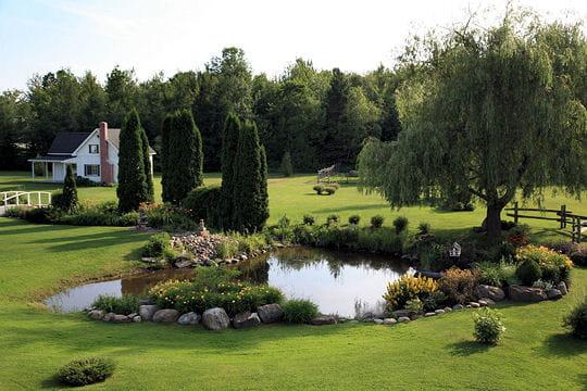 L 39 tang vous avez lu votre jardin pr f r 2008 for Etang jardin