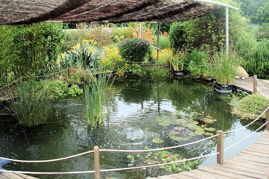 Bassin De Jardin Grand Volume - Rellik.us - rellik.us