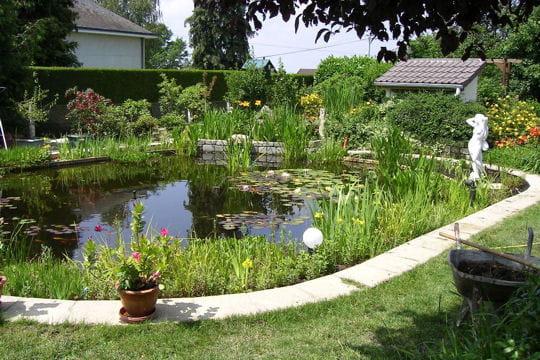 Deco bassin exterieur deco bassin exterieur sur for Plante bassin exterieur