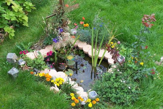 Mini bassin les plus beaux bassins journal des femmes for Bassin de jardin en plastique