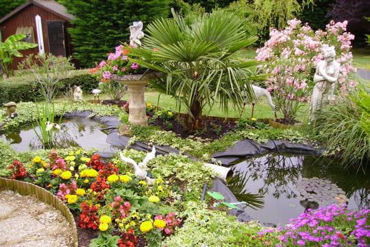 le paradis des poissons les plus beaux bassins journal des femmes. Black Bedroom Furniture Sets. Home Design Ideas