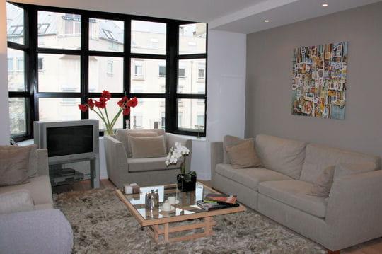 salon un appart 39 classique l 39 esprit loft journal des femmes. Black Bedroom Furniture Sets. Home Design Ideas