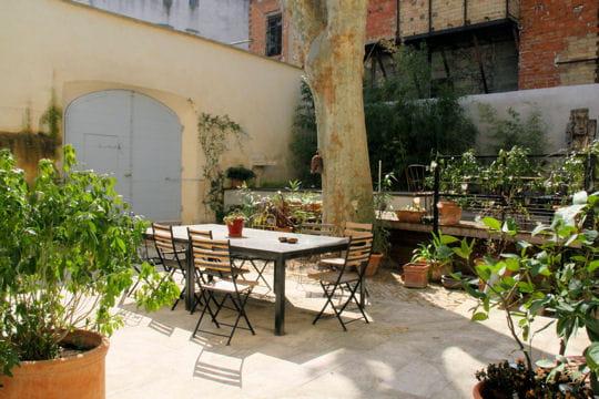 Petit jardin privé : Douceur exotique à la Maison sur la ...