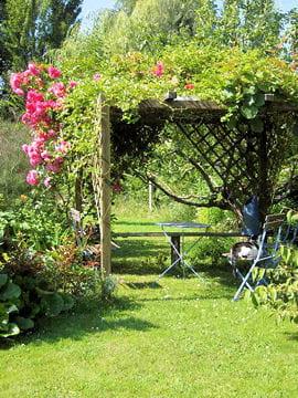 s 39 abriter des regards pergolas journal des femmes jardin. Black Bedroom Furniture Sets. Home Design Ideas