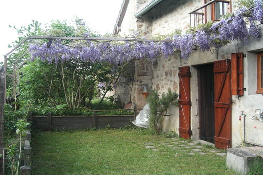 Glycine