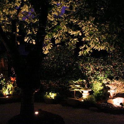 Le jardin de nuit jardin japonais un avant apr s - Deco jardin journal des femmes toulouse ...