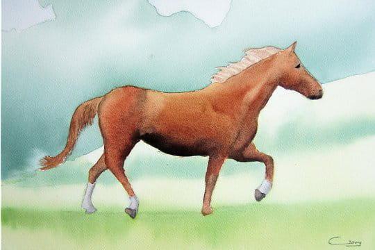 Cheval de profil a imprimer - Image cheval a imprimer ...
