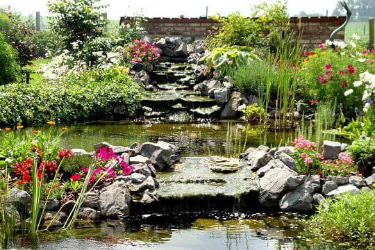 Un bassin d cor de pierres bleues les plus beaux for Bassin de jardin en pierre