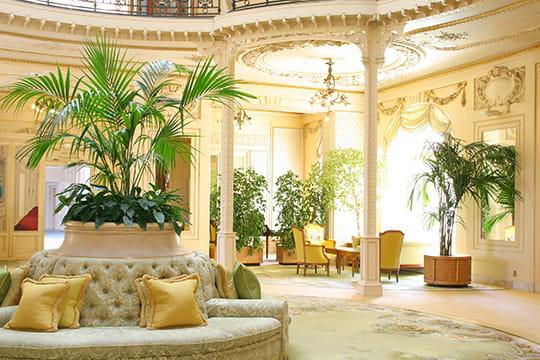 Jardin d\'hiver - 25 salons de décorateurs - Journal des Femmes ...