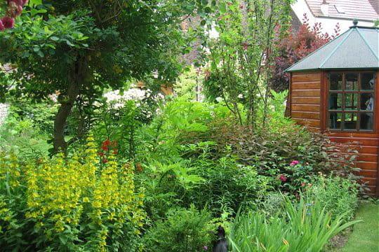 La Maison Au Fond Du Jardin Le Jardin De La Ninette Journal Des Femmes