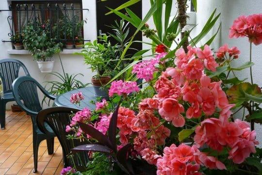 terrasse bien fleurie