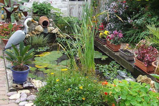 Le bassin au h ron ces l ments d co qui font votre - Deco jardin journal des femmes toulouse ...