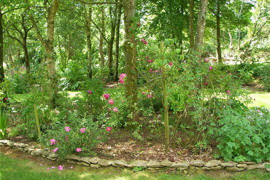 Un entretien quotidien le jardin de danyland journal for Entretien jardin le havre