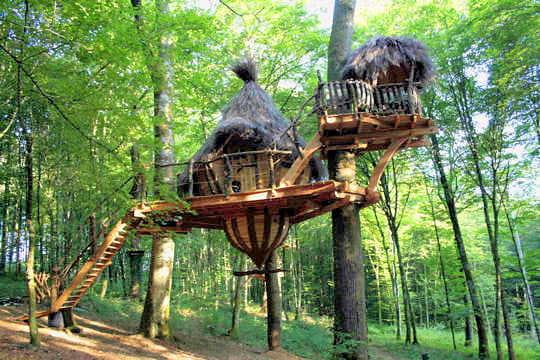 Fabriquer Une Cabane En Bois Dans Un Arbre : Petite hutte suspendue : Sur un arbre perch? – Journal des Femmes