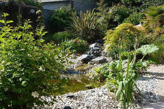 Une plante vient en remplacer une autre ambiance zen for Le jardin normand