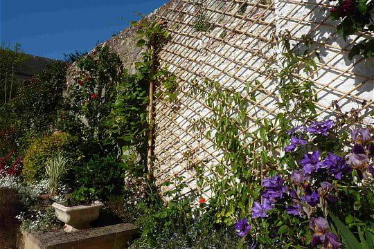 Des plantes pour cacher le mur ambiance zen dans le for Cacher un mur de jardin